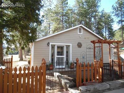 Woodland Park Single Family Home For Sale: 223 E Sheridan Avenue