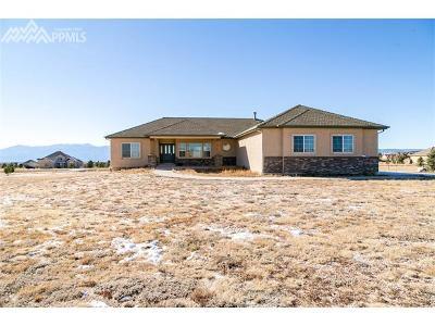 Colorado Springs Single Family Home For Sale: 9679 Kilninver Court