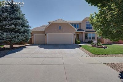 Colorado Springs Single Family Home For Sale: 5717 Whiskey River Drive