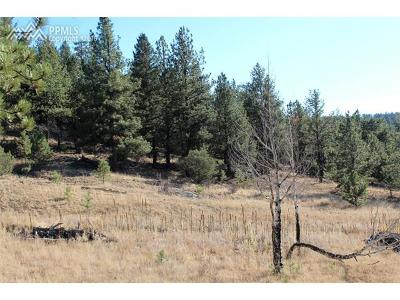 Residential Lots & Land For Sale: 44 Vista Circle