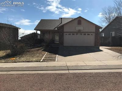 Colorado Springs Single Family Home For Sale: 7247 Coral Ridge Drive