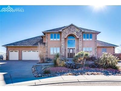 Pueblo Single Family Home For Sale: 3534 Delano Court