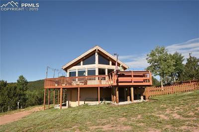 Cripple Creek Single Family Home For Sale: 9960 S Highway 67 Highway