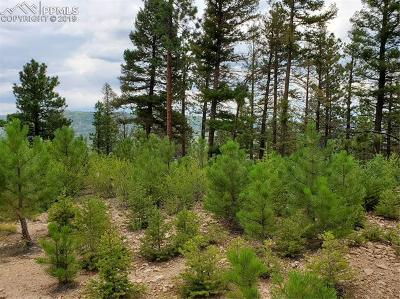 Residential Lots & Land For Sale: 681 Elk View Court