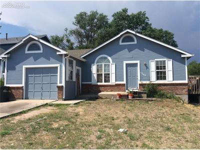 Colorado Springs Single Family Home For Sale: 3340 Simmelink Loop