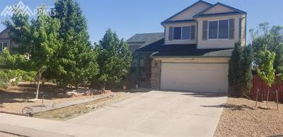 Colorado Springs Single Family Home For Sale: 1337 Grass Valley Drive