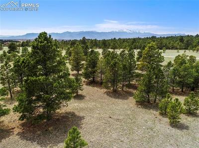 Colorado Springs Residential Lots & Land For Sale: Forest Line Way