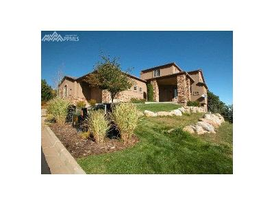 Colorado Springs Condo/Townhouse For Sale: 1066 Summer Spring View
