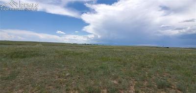Peyton Residential Lots & Land For Sale: 7506 Buckskin Ranch View