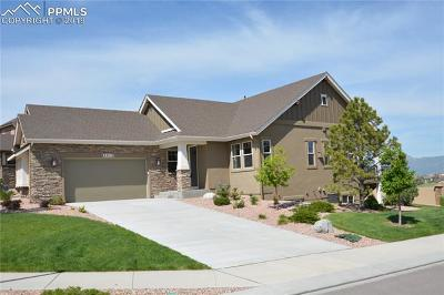 El Paso County Single Family Home For Sale: 4413 Portillo Place