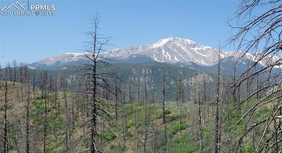 Cascade Residential Lots & Land For Sale: 4129 Pyramid Mountain Road