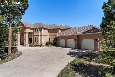 Monument Single Family Home For Sale: 1355 Embassy Court