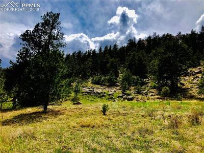 Residential Lots & Land For Sale: 137 Ranch View Drive