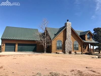 Single Family Home For Sale: 17585 Spur Ranch Road