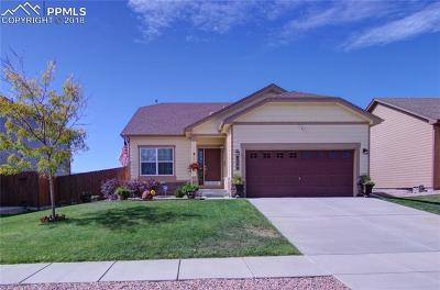 Single Family Home For Sale: 8248 Chasewood Loop