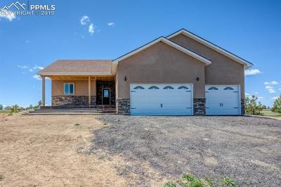 El Paso County Single Family Home For Sale: 16570 Oak Brush Loop