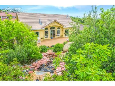 Colorado Springs Single Family Home For Sale: 5560 Parapet Court