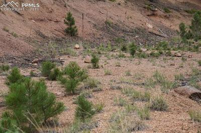 Manitou Springs Residential Lots & Land For Sale: 122 Eagle Mountain Road