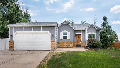 Colorado Springs CO Single Family Home For Sale: $260,000