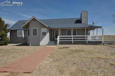 Colorado Springs Single Family Home For Sale: 13540 Hobby Horse Lane