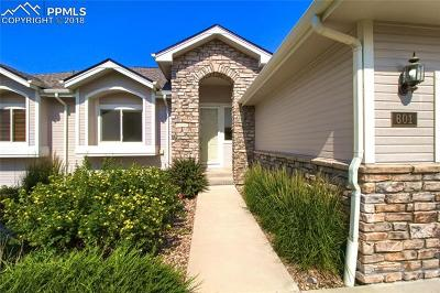 Castle Rock Single Family Home For Sale: 601 Stafford Place