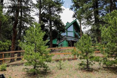 Woodland Park Single Family Home For Sale: 145 Valley Lane