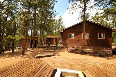 Florissant Single Family Home For Sale: 117 Rabbil Creek Trail