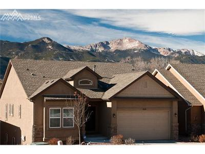 Colorado Springs Single Family Home For Sale: 1214 Ethereal Circle