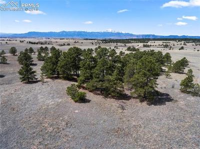 Colorado Springs Residential Lots & Land For Sale: 9172 Nature Refuge Way
