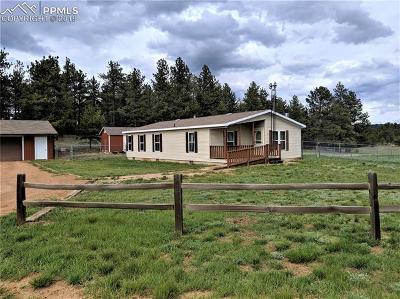 Single Family Home For Sale: 232 Heiserman Road