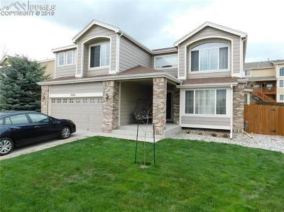 Colorado Springs Single Family Home For Sale: 7212 Eagle Canyon Drive
