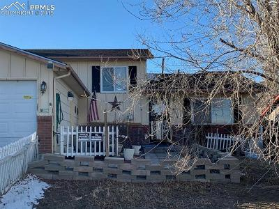 Colorado Springs Single Family Home For Sale: 4334 College View Drive