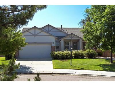 Single Family Home For Sale: 3569 Painted Daisy Court