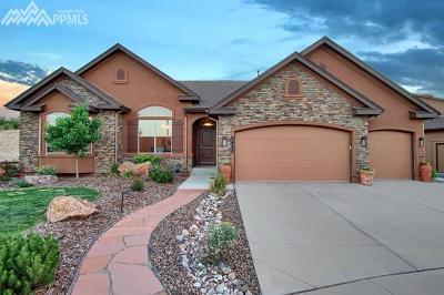 Colorado Springs Single Family Home For Sale: 2477 Fieldbrook Court