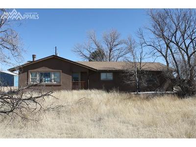 El Paso County Single Family Home For Sale: 14910 Russell Drive