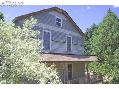 Manitou Springs Single Family Home For Sale: 113 Deer Path Avenue