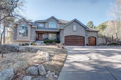 Colorado Springs Single Family Home For Sale: 583 Silver Oak Grove
