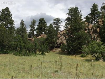 Florissant CO Residential Lots & Land For Sale: $90,000