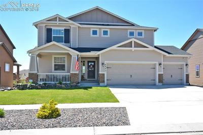 Colorado Springs Single Family Home For Sale: 6043 Wolf Village Drive