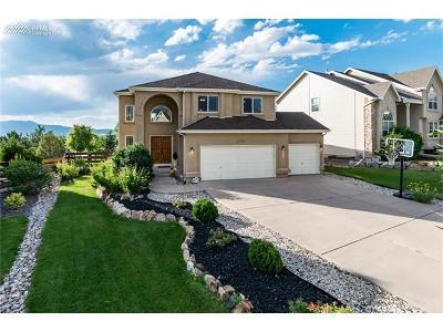 Single Family Home For Sale: 12724 Rockbridge Circle