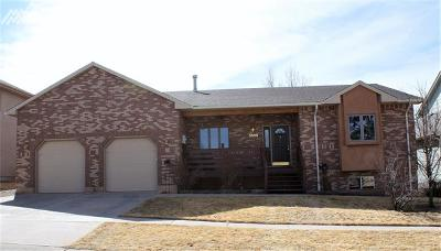 Colorado Springs Single Family Home For Sale: 2525 Stone Creek Road