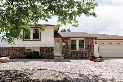 Colorado Springs Single Family Home For Sale: 2224 Vintage Drive