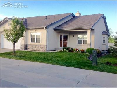Condo/Townhouse For Sale: 14347 Eagle Villa Grove