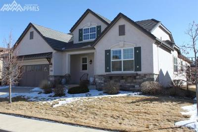 Pine Creek Single Family Home For Sale: 2455 Pine Valley View