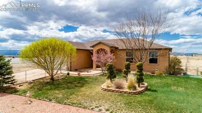 Pueblo West Single Family Home For Sale: 679 Camino Del Contento Street