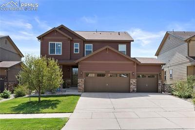 Colorado Springs Single Family Home For Sale: 6624 Monterey Pine Loop