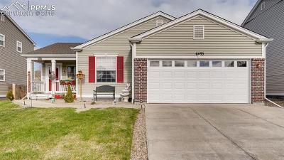 Colorado Springs Single Family Home Under Contract - Showing: 6695 Balance Circle