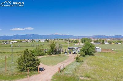 Colorado Springs Single Family Home For Sale: 6150 Sayres Road
