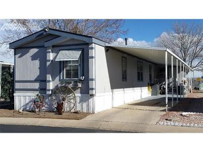 Colorado Springs Single Family Home For Sale: 205 N Murray Boulevard #100