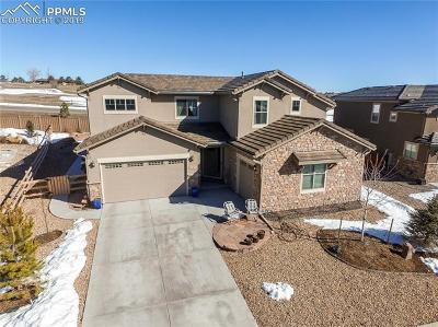 Castle Rock Single Family Home For Sale: 295 Andromeda Lane